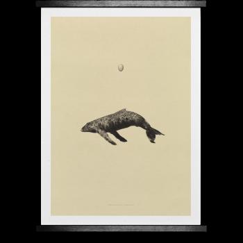 Whale original 50x70cm