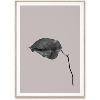 Sabi leaf 03 50x70cm