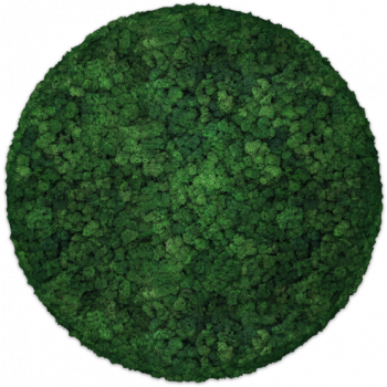 Moos Convex Circle ø60cm moss
