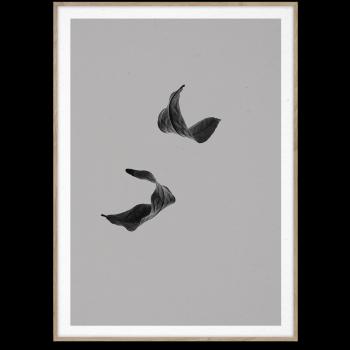Sabi leaf 02 50x70cm